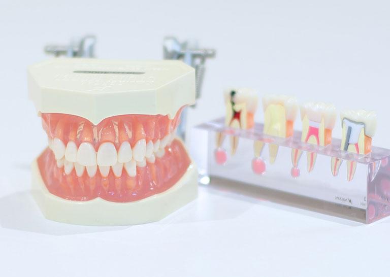 正しい歯ブラシの方法を説明する写真